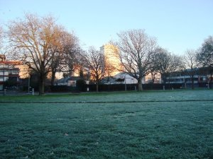 Frost in Latimer Square