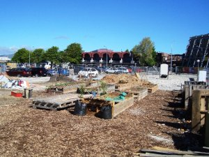 Agropolis Urban Farm