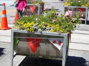 Planters with bunting in City Mall
