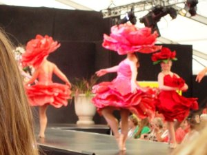 Jenny Gillies' Roses
