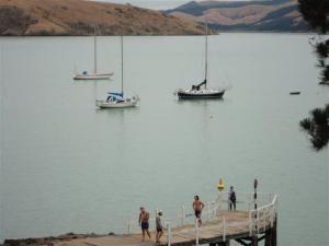 Lyttelton Harbour from Corsair Bay