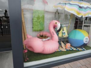 Flamingo in Ballantyne's window