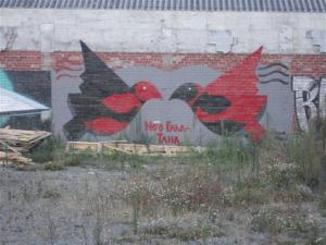 Red and black birds