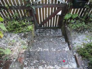 Hail by the front gate