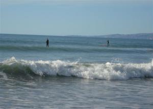 Paddle boarders (Small)