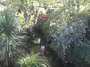 Waimairi Stream near Barlow Street