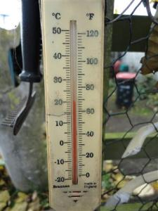 Thermometer (Small)