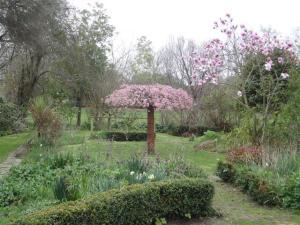 Di Madgin's Garden