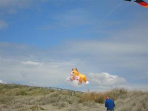 cat-kite-small