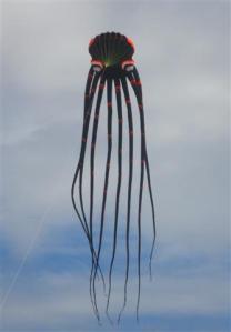 octopus-kite-small