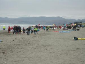 hundreds-on-waimairi-beach-small