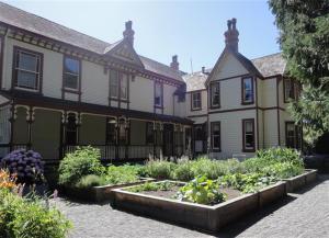 Vegetable garden beside the house